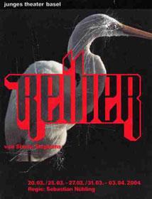 Reiher (Herons)